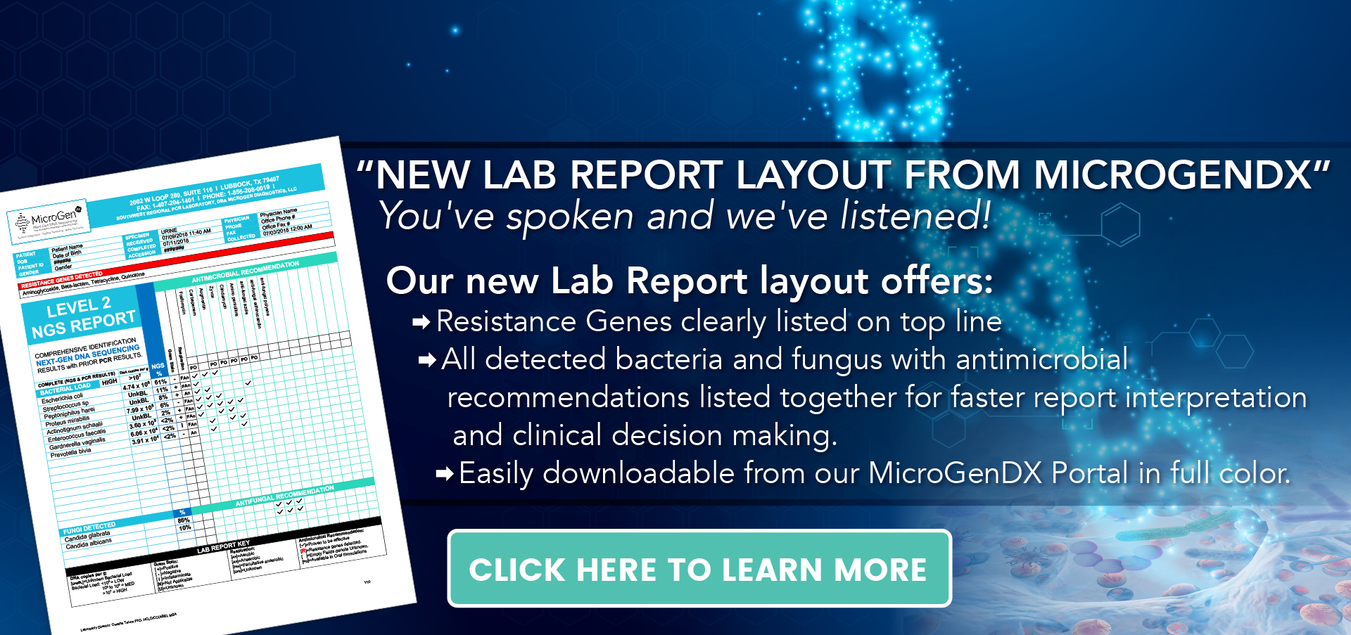 New Lab Report Guide