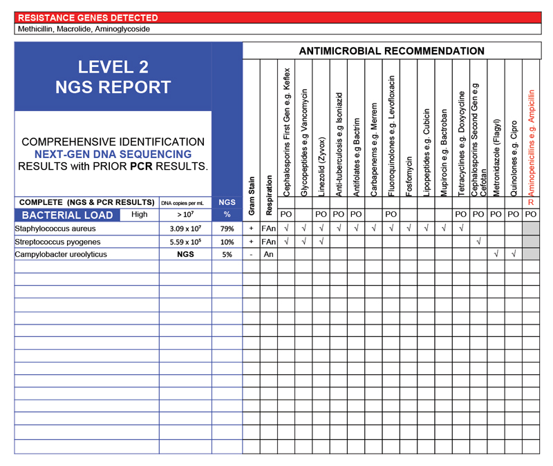 Wound Lab Report Sample